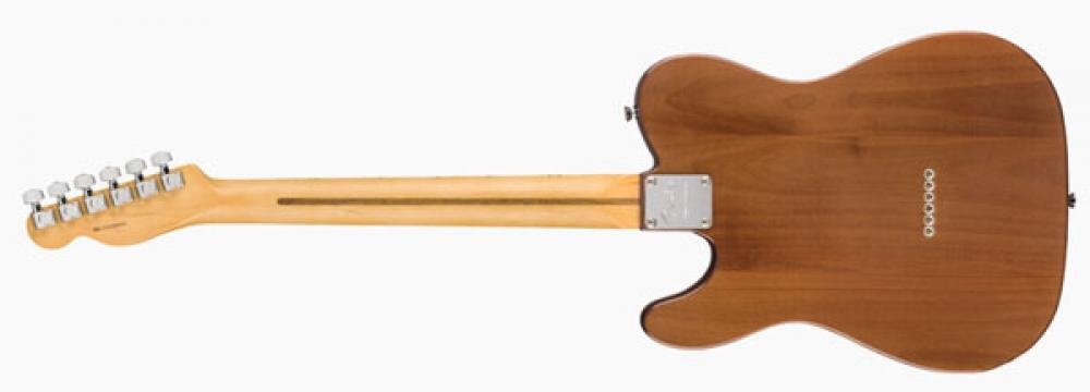 Fender Rarities: Telecaster flame maple in video