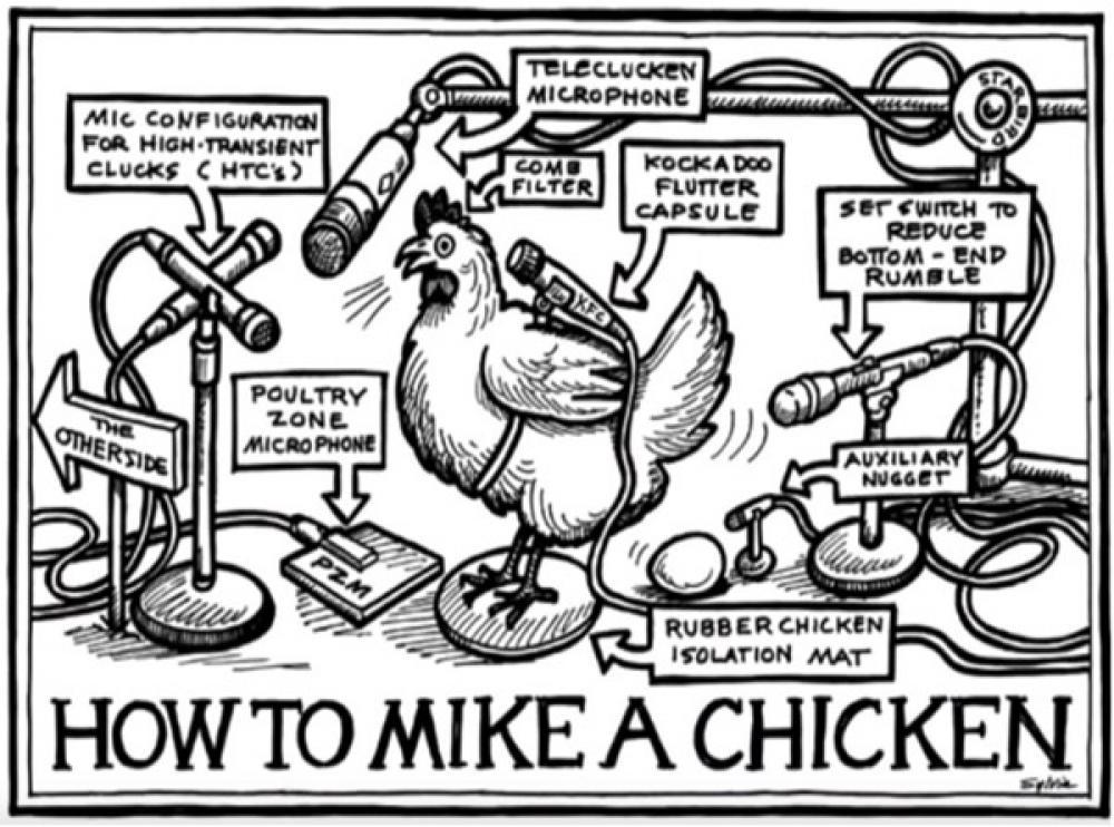 Sylvia Massy: dietro la console tra polli, patate e fucili