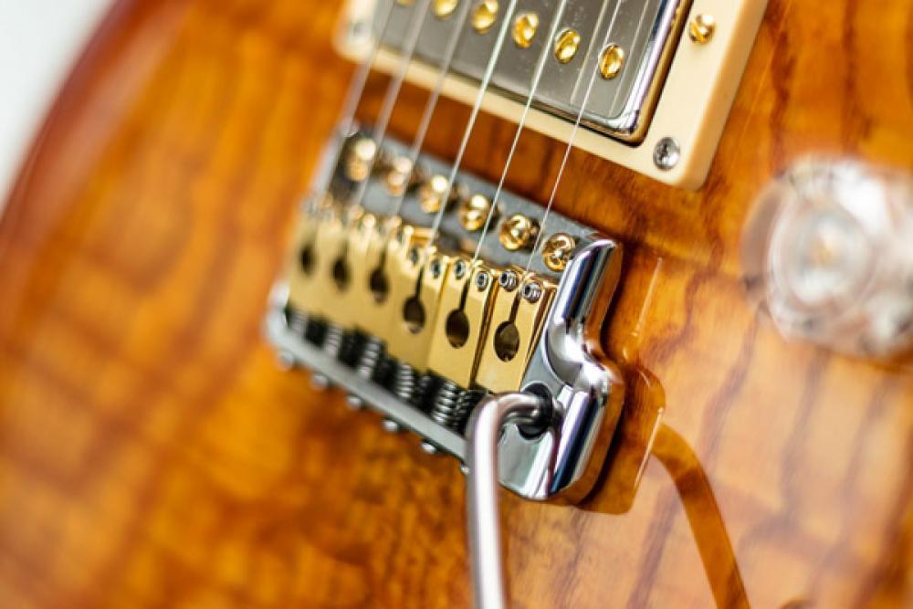 PRS SE Custom 24: la MIA chitarra