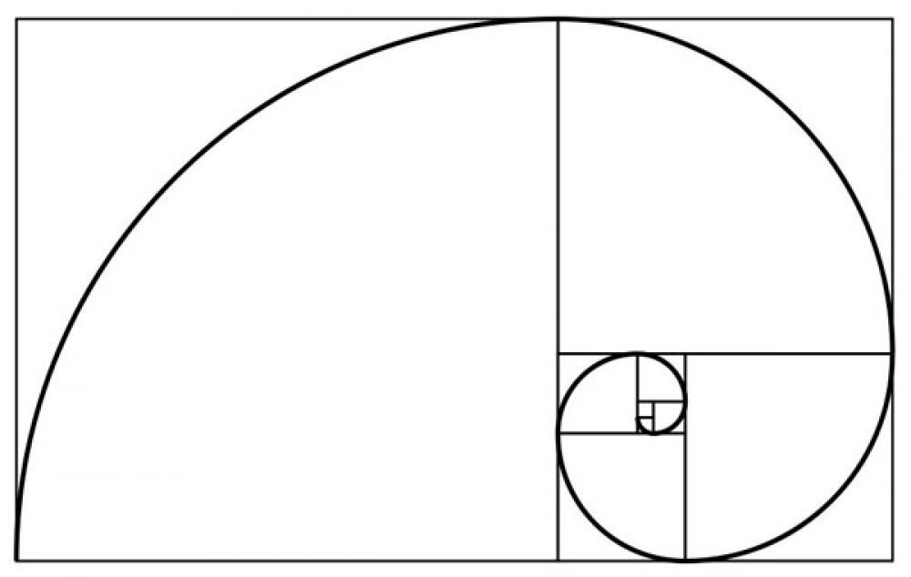 Perché la buca a effe ha questa forma?