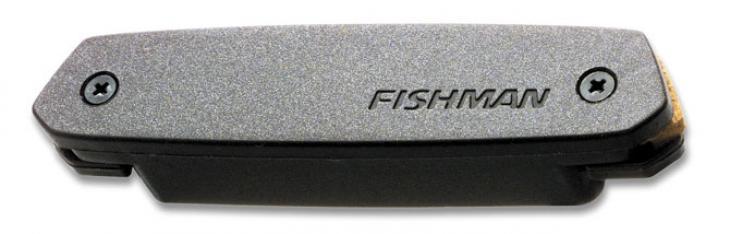 Fishman Neo-D