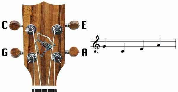 Scegliere e accordare l'ukulele