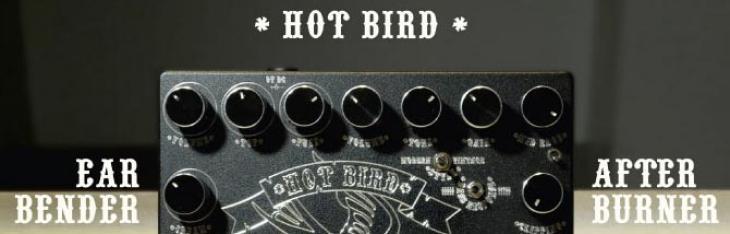 Hot Bird: tutto sul distorsore italiano di Ace degli Skunk Anansie
