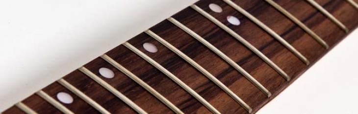 La tua chitarra in palissandro potrebbe diventare illegale