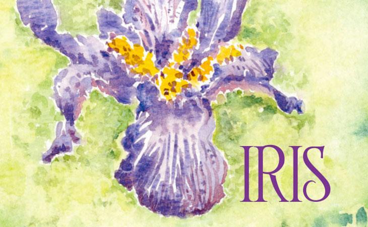 Monna Lisa a casa di Iris